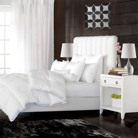 Oasis White Feather/ Down Duvet Fill K 65 Oz