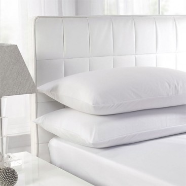 White Duck Feather Pillows Twin Pack.